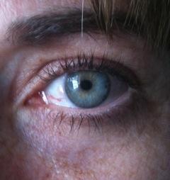 RevitaLash Results - eyelashes