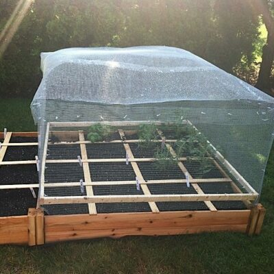 What Is Square Foot Gardening? Check Out My Backyard Vegetable Garden!