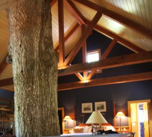 winvian charter oak cottage connecticut