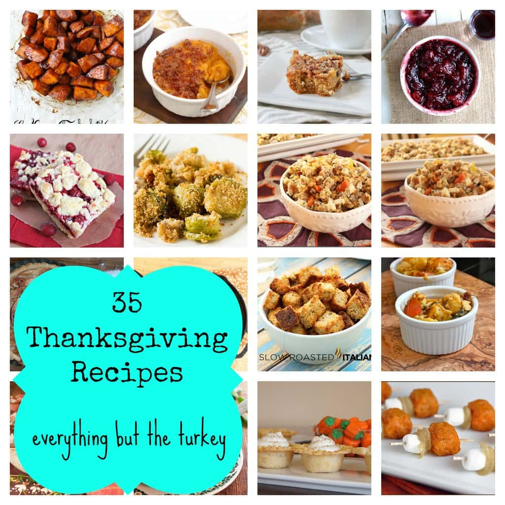A Food And Recipe Blog Post Thanksgiving: 35 Thanksgiving Recipes: Everything But The Turkey!