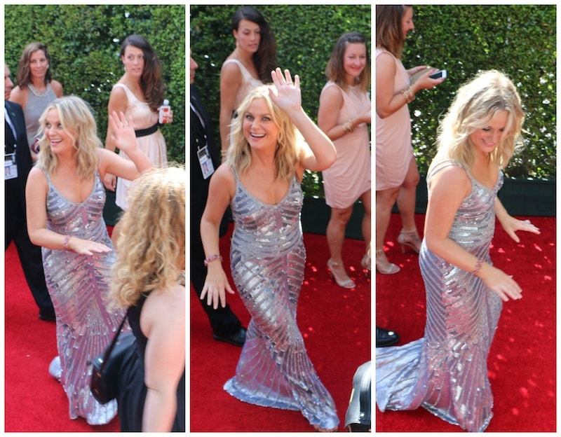 amy poehler emmys red carpet 2014