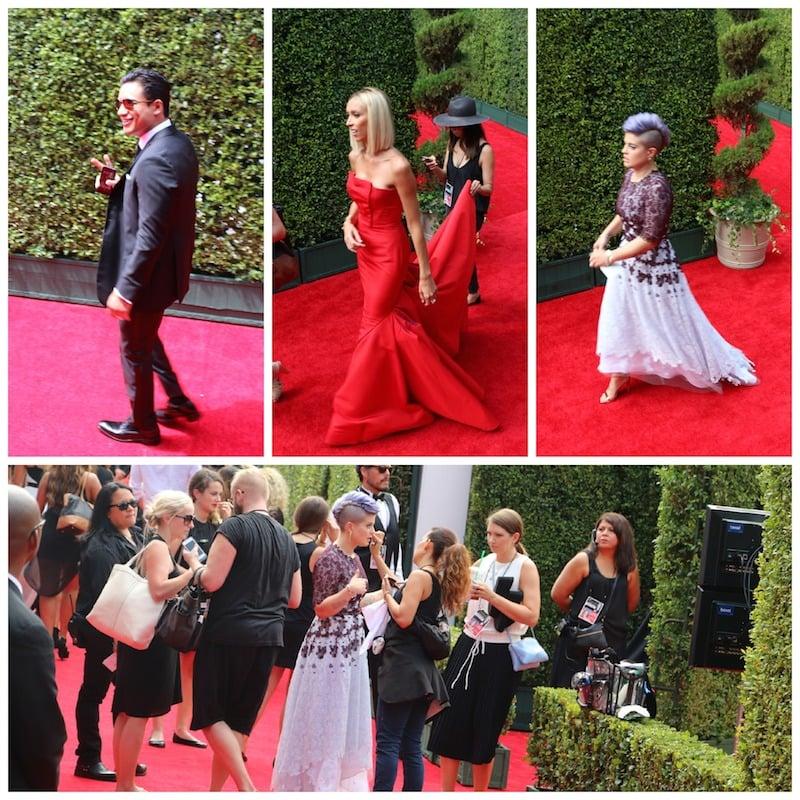 celebrities_red_carpet_emmys_2014