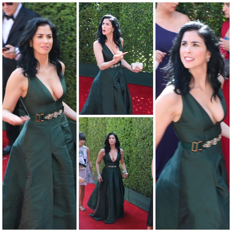 sarah silverman red Carpet emmys 2014