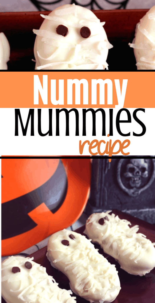 mummy nummies