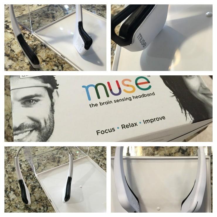 Muse Headband Collage
