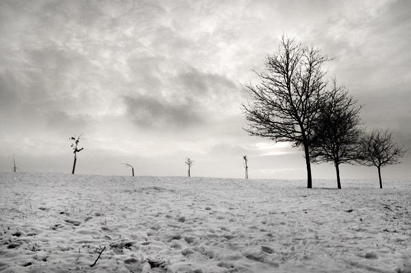 clouds-grey-snow-tree-white-winter-Favim.com-108565