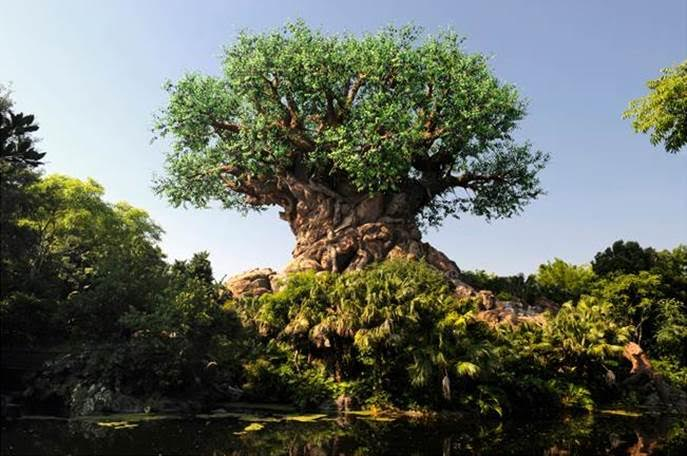Animal Kingdom Circle of Life Tree