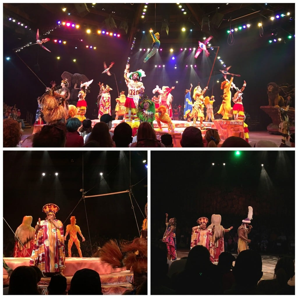 Lion King Show Animal Kingdom