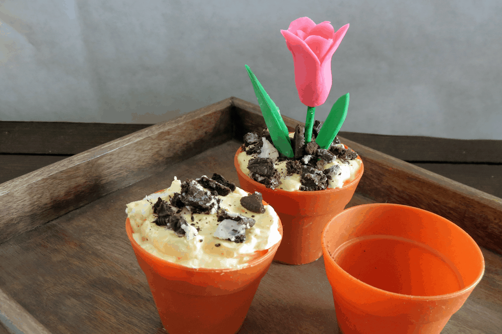 Spring Flower in Dirt Pudding #Set 1B