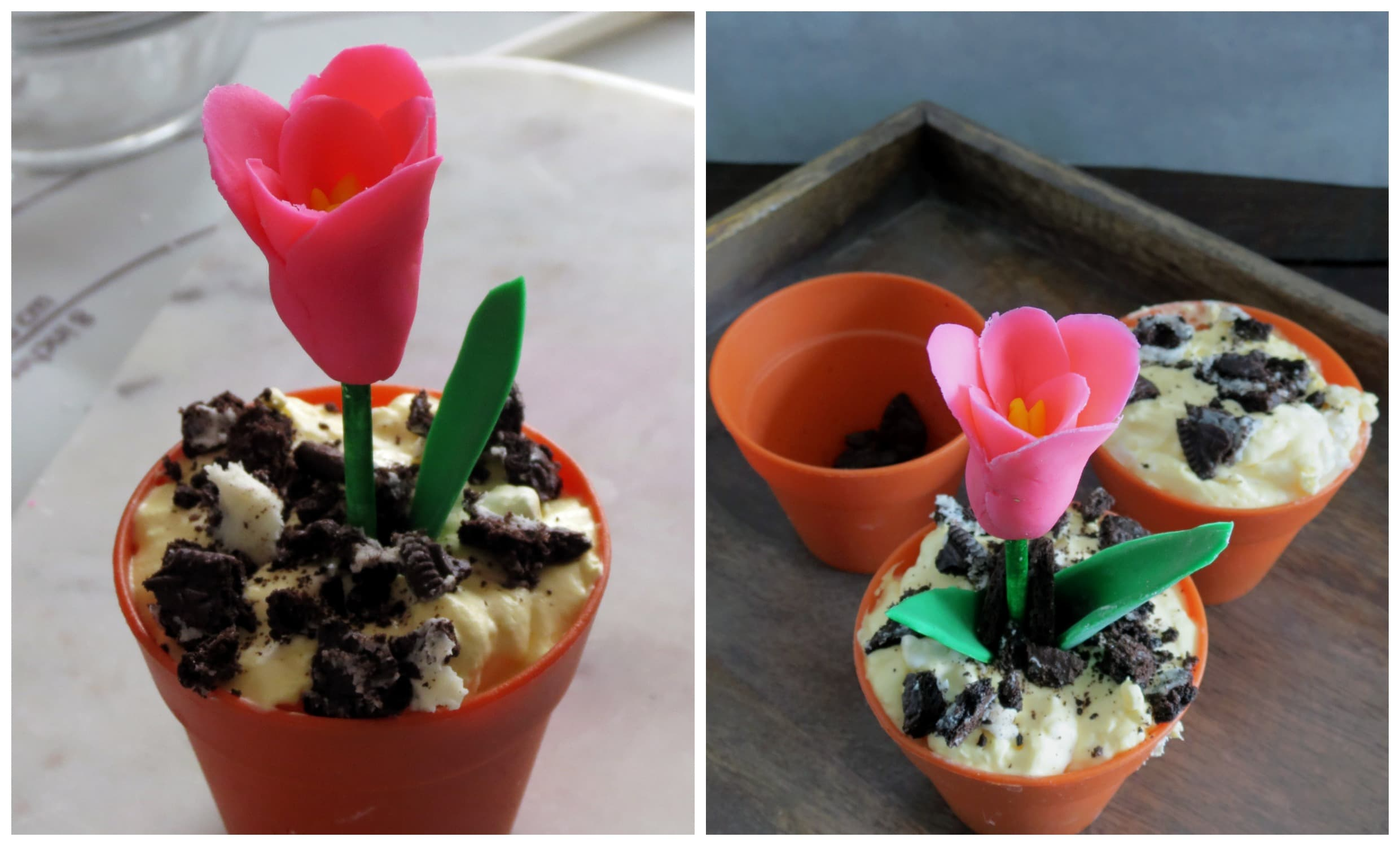 Edible Flowers in Dirt Pudding