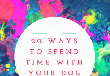 It's National Dog Week! 20 Ways To Celebrate #FriendsofBeneful (Plus Enter To Win 1 Year Supply Of Beneful)