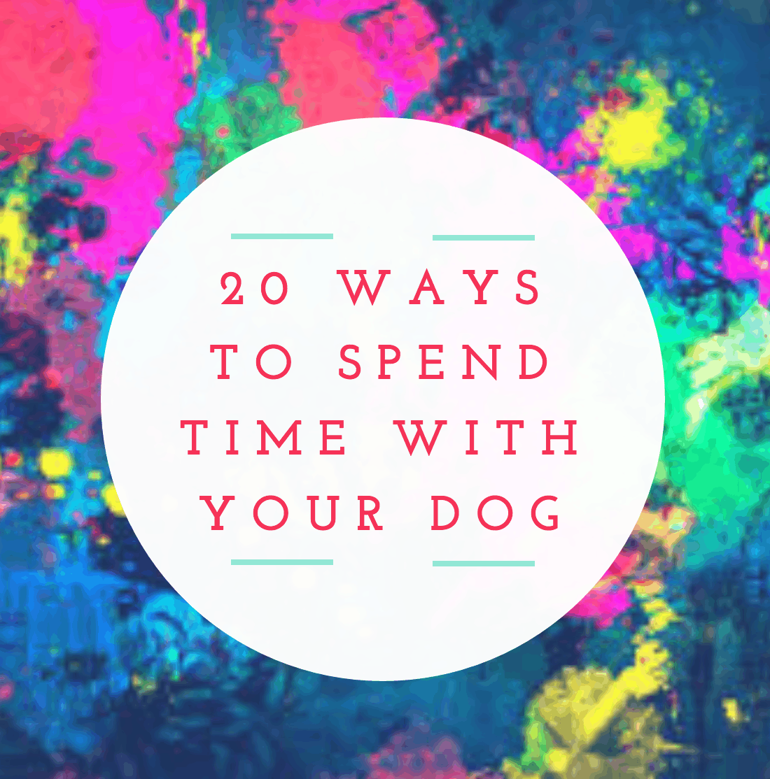 It's National Dog Week! 20 Ways To Celebrate #FriendsofBeneful (Plus Enter To Win 1 Year Supply Of Beneful)