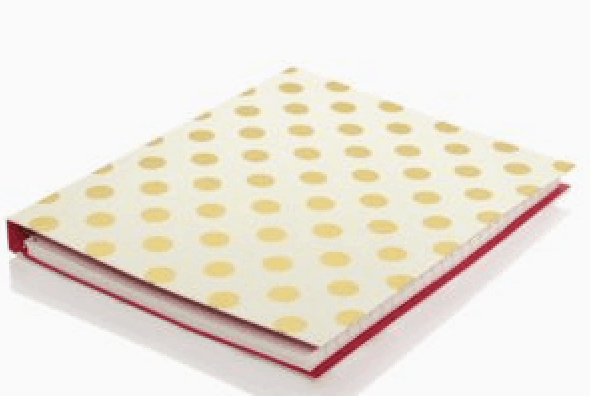 Gold Dot Concealed Spiral Notebook