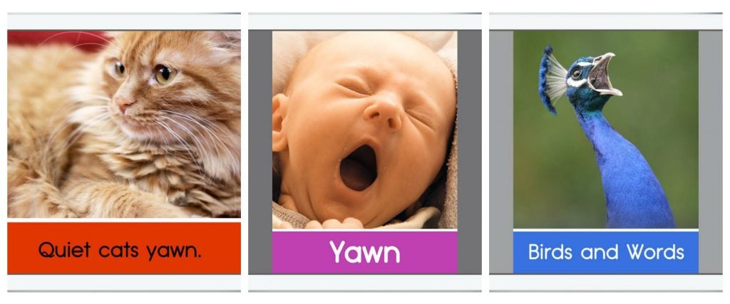 WeeSchool uses today's technology to create the most complete educational content experience for babies and toddlers.