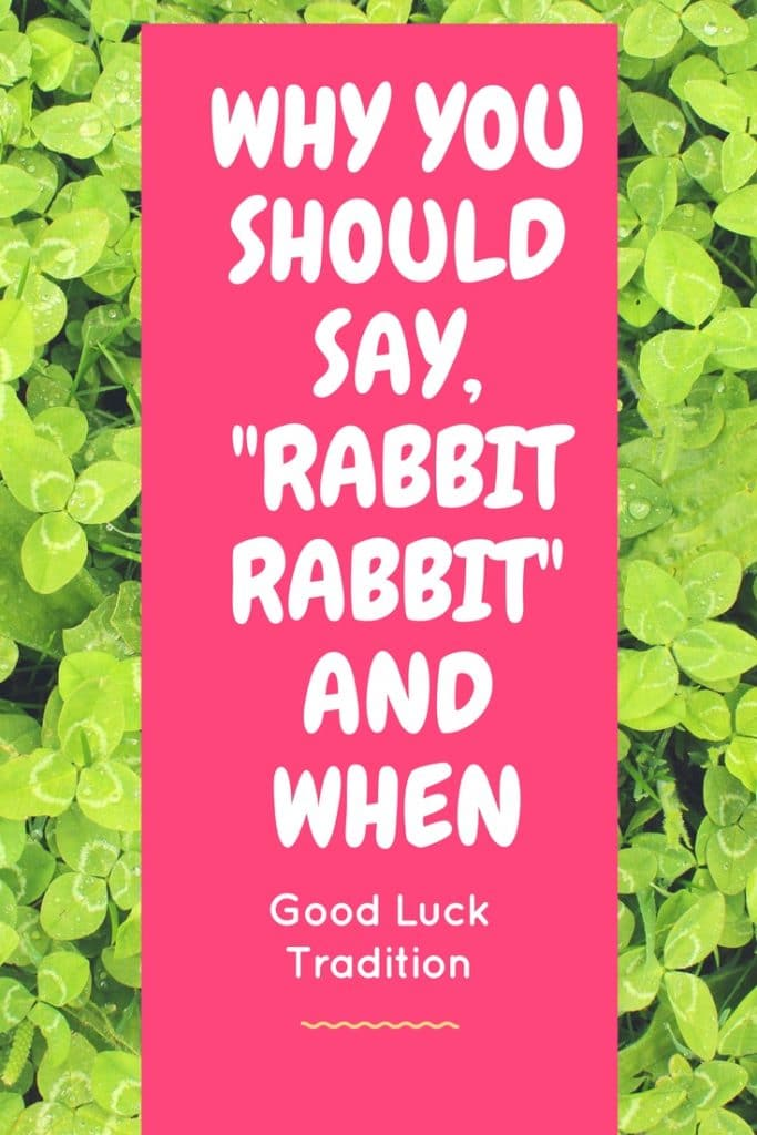 Say 'Rabbit Rabbit' RIGHT NOW And You Will Have Good Luck For The Entire Month