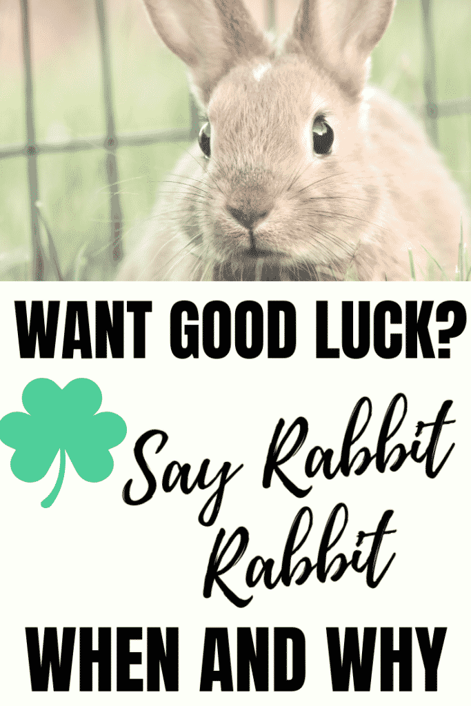 When And Why You need to Say Rabbit rabbit for good luck