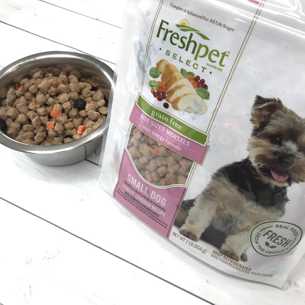 Freshpet Dog Food Review