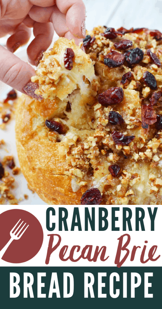 Cranberry Brie Bread Recipe