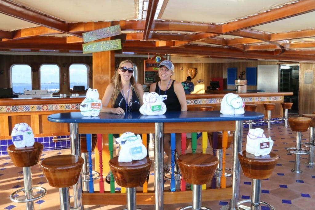 Carnival Cruise deck animal towels