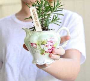 How To Make A DIY Herb Planter - Easy Hostess Gift