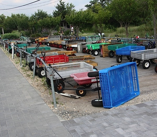 Carts In a Row Fire Island on Long Island