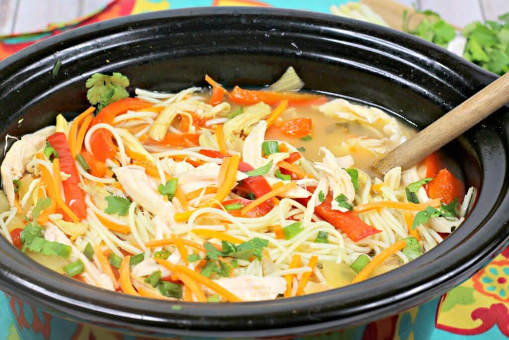 Asian Slow Cooker Chicken Noodle Soup