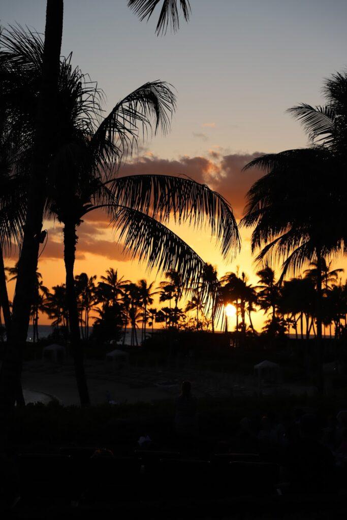 Hawaii Sunsets