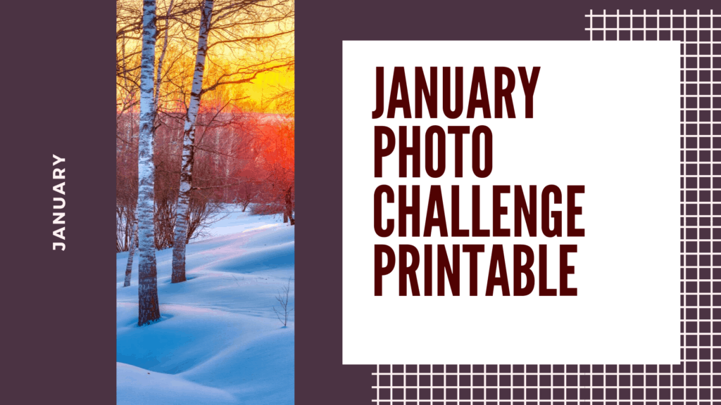 january photo a day