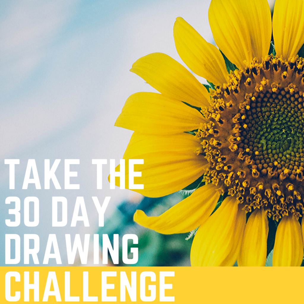 Take The 30 Day art Challenge