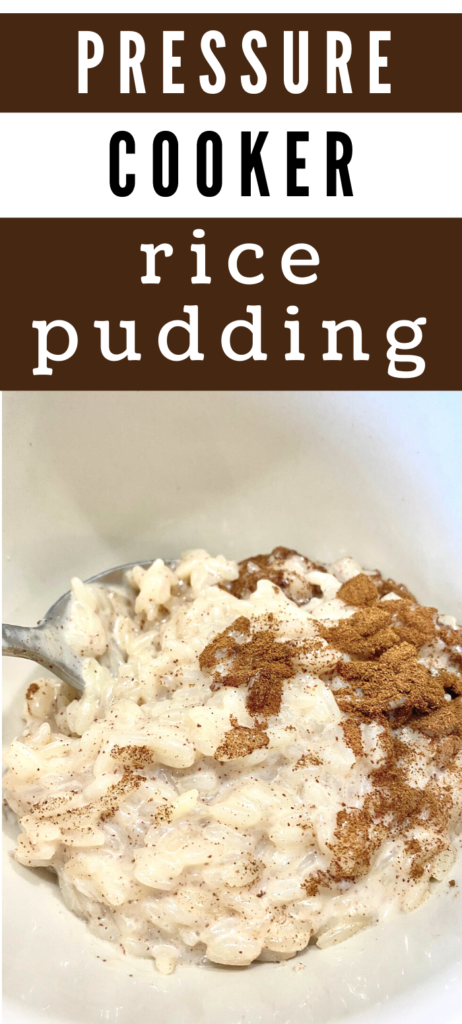 Pressure Cooker Rice Pudding