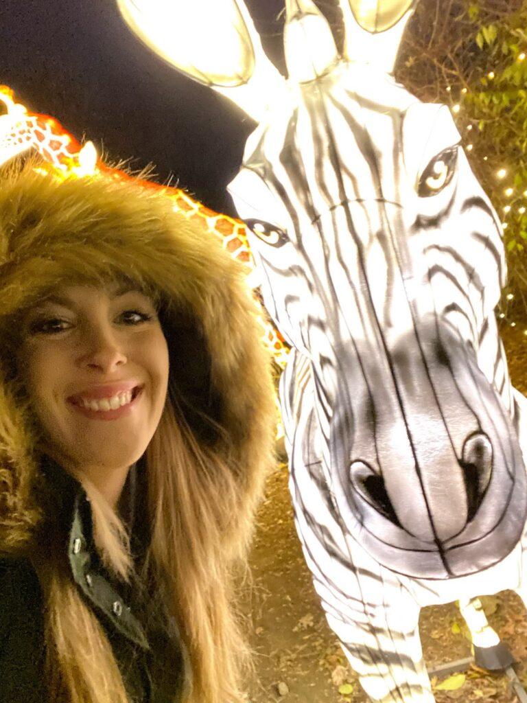 christmas lights at the bronx zoo
