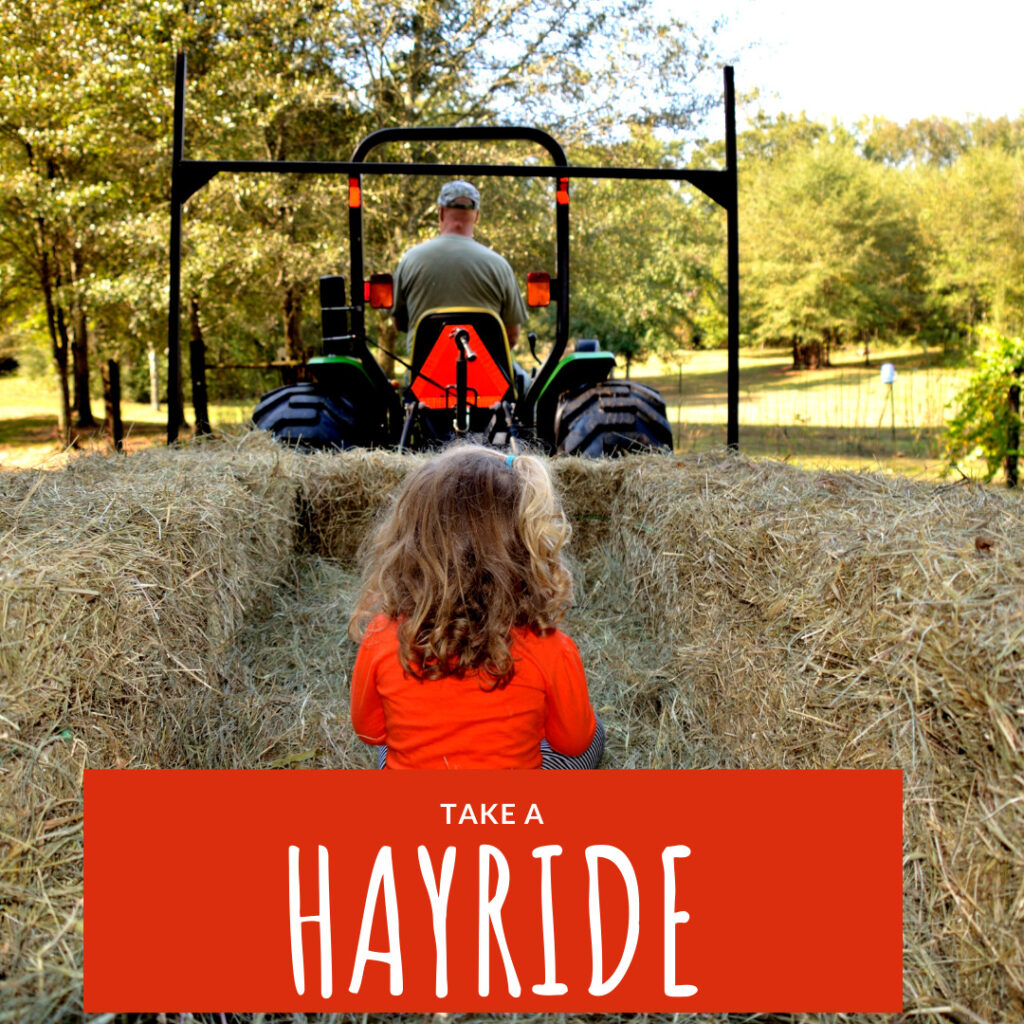 go on a hayride with the family